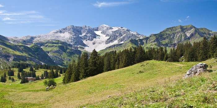grüne Wiese und dahinter ein Berg etwas mit Schnee bedeckt