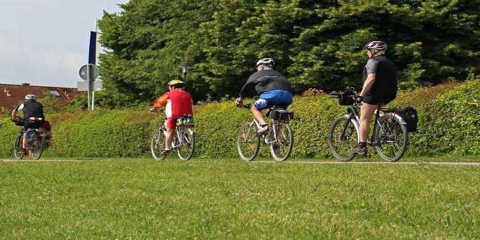 Drei Radfahrer auf einem Radweg