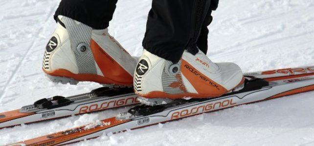 Die optimale Winterausrüstung für Naturfreaks