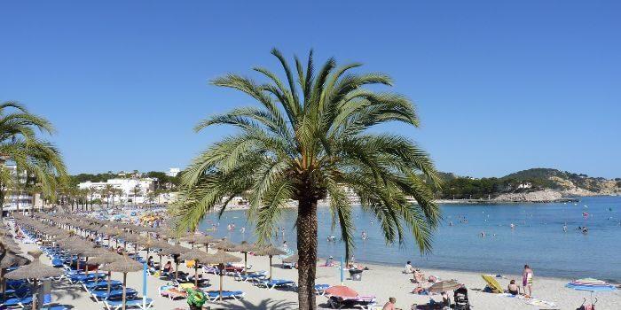 Mallorca mit dem Mietwagen erkunden