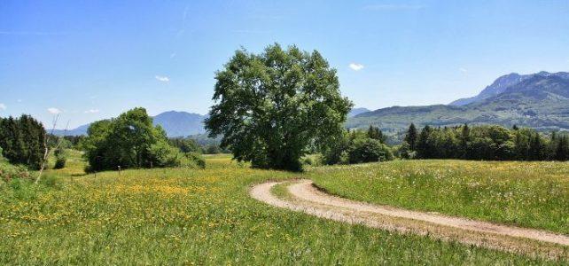 Kurzurlaub in Oberbayern