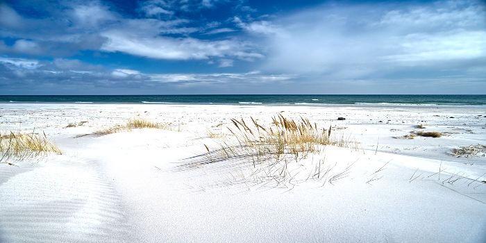 Bild von einer Dünenlandschaft an der Ostsee Dänemarks
