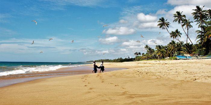 Strand und Meer mit Palmen im Hintergrund