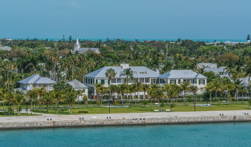 Häuser mit vielen Palmen in zwischen.