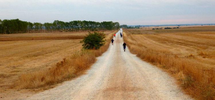 Der Jakobsweg – Für Leib und Seele