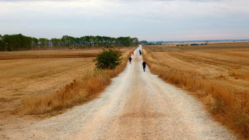 Der Jakobsweg zwischen Feldern wo ein paar Pilger Richtung Santiago de Compostela unterwegs sind.